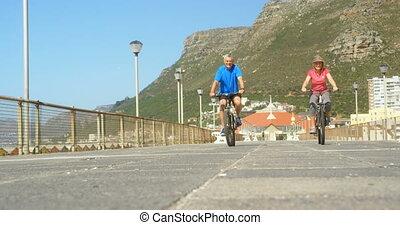 couples aînés, actif, vue, bicyclette voyageant, promenade, caucasien, plage, 4k