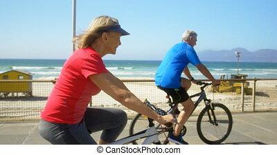couples aînés, côté, actif, vue, bicyclette voyageant, promenade, caucasien, plage, 4k