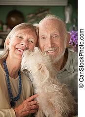 couples aînés, chien
