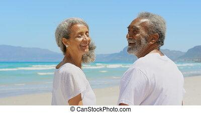 couples aînés, debout, côté, actif, africaine, vue, soleil, heureux, américain, 4k, plage