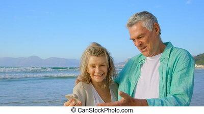 couples aînés, seashell, vue, tenue, caucasien, plage, 4k