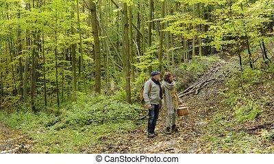 couples aînés, sur, a, entrez, automne, forest.