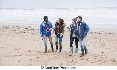 Couples Walk Along Winter Beach - Two couples talk and laugh...