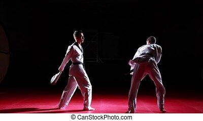 coups pied, taekwondo, séquence