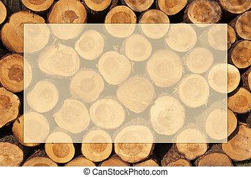 coupure, anneaux, arbre, cadre, troncs, tas, année