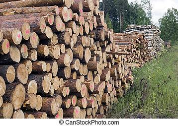 coupure, arbres, fond, nature