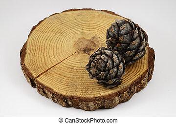 coupure, bûche, bois, deux, pin, fente, cercle, cônes