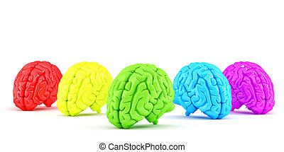coupure, brains., coloré, isolated., concept., contient, créatif, humain, sentier