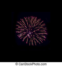 coupure, fête, isolated., feux artifice, arrière-plan noir, dehors