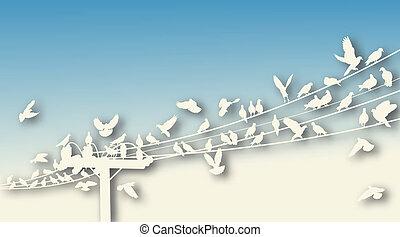 coupure, perchoir, oiseau