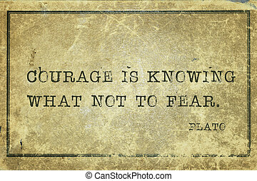 Courage is Plato - Courage is knowing what not to fear-...
