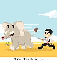 courant, chasseur, éléphant