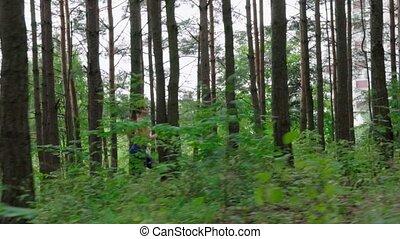 courant, femme, forêt