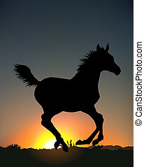 courant, silhouette, cheval
