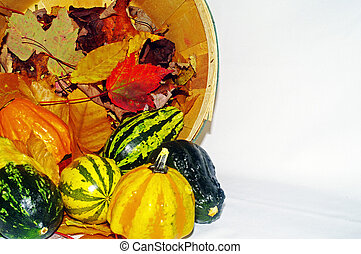 courges, automne