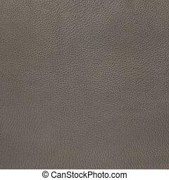 couro, closeup, cinzento, textura