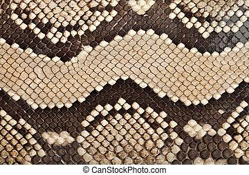 couro, cobra, textura