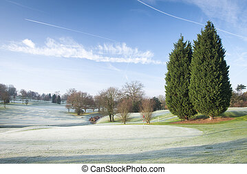 cours, golf, hiver