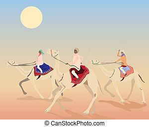 course, chameau