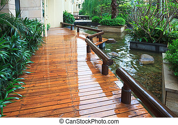 courtyard - the courtyard of an house outdoor in the rain.