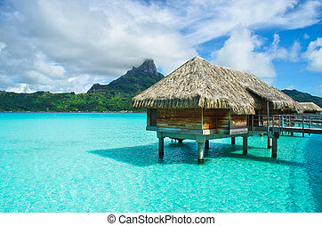 couvert chaume, bungalow, toit, bora, lune miel