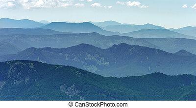 couvert, forêt, collines
