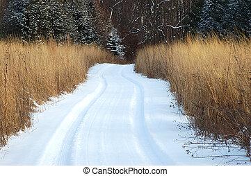 couvert, neige, chemin