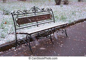 couvert, premier, parc, neige, banc