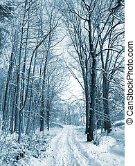 couvert, route, arbres hiver, neige, wood.