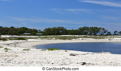 Cove on a sandy beach on the Gulf of Mexico Coast