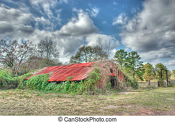 An ancient barn is being overtaken by weeds