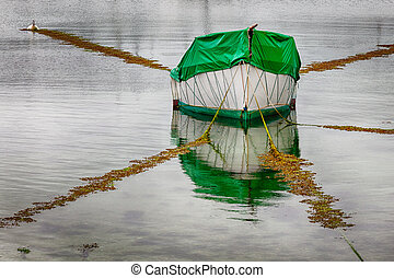 Covered Boat Reflection