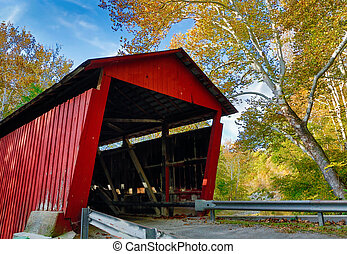Covered Bridge and Sycamore Tree - A giant sycamore tree...