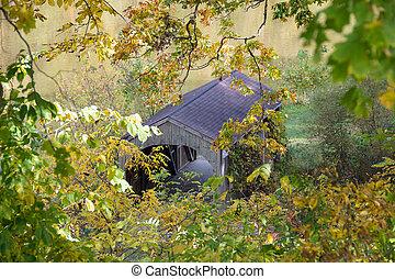 covered bridge in fall foliage