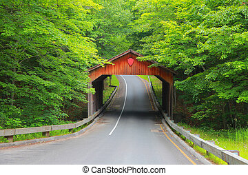 Covered bridge in Michigan