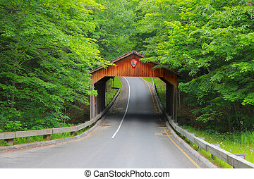 Covered bridge in Michigan - Covered bridge near Sleeping...