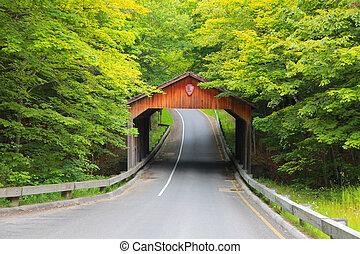 Covered bridge, Michigan