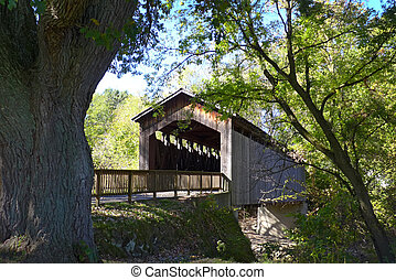 Covered Bridge Thornapple - Covered bridge over Thornapple...