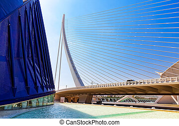 Covered plaza in which concerts and sporting events (L'Àgora...