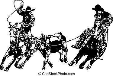 cow-boy, équipe, ropers