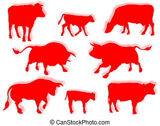 Cow, bull, and calf in silhouette