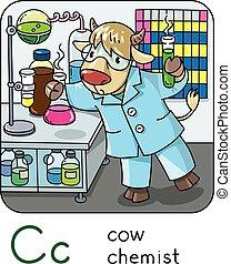 Cow chemist. Animals profession ABC. Alphabet C
