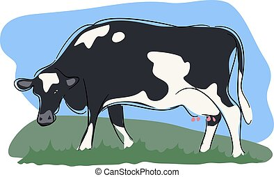 Cow - A cow grazing in a field.
