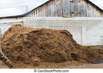 Cow dung as a natural fertilizer - Heap of cow dung as a...