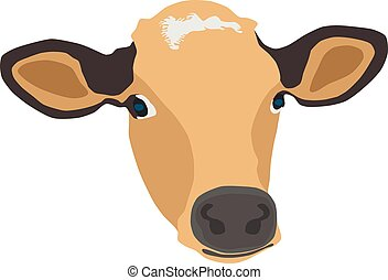 cow face vector illustration