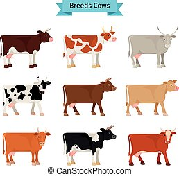 Cow flat icons