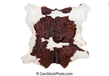 Cow fur (skin) background or texture
