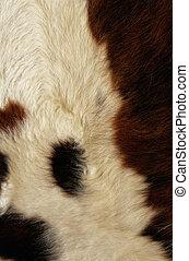 cow fur texture