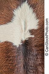 Cow Fur