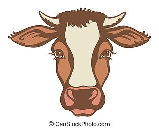 Cow head Farm animal. Vector color graphic illustration isolated on white.